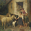 Feeding The Sheep by Adolf Eberle
