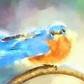Feeling Blue by Tina LeCour