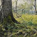Fell Plants by Johan Tiren
