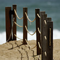 Fence Along The Beach by Julie Niemela