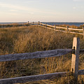 Fence Along The Dunes - Madaket - Nantucket by Henry Krauzyk