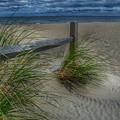 Fence And Dune Grass by Frank Morris