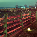 Fence And Luminaries 11 by Judi Quelland