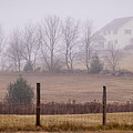 Fence Field And Fog by Diane Moore