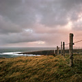 Fence In Ireland by Danielle D. Hughson
