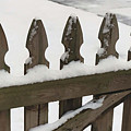 Fence In The Snow by Diana Davenport