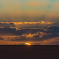 Fence Line by Lynton Brown