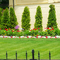 Fence Lined Garden by Kendall Tabor