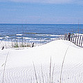 Fence On The Beach, Gulf Of Mexico, St by Panoramic Images