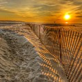 Fence On The Beach by William Rogers