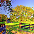 Fence Pasture And Barn 1721 by Doug Berry