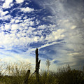 Fence Post And New Mexico Sky by Jeff Swan