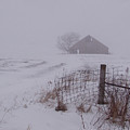 Fence Post In The Snow by Kevin Callahan