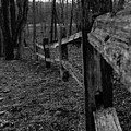 Fence To Nowhere by September  Stone