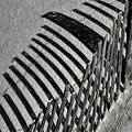 Fenced by Elijah Knight