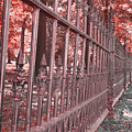 Fenced In Red by Larry Jost