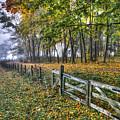 Fenceline by Jeff Cooper