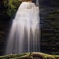 Fern Falls, Id by Inanimacy Photography