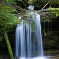 Fern Falls by Idaho Scenic Images Linda Lantzy