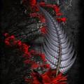 Silver Fern  by Ali Oppy