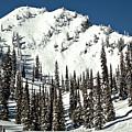 Fernie Skiers Paradise by Adam Jewell