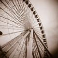 Ferris Wheel by Crystal Nederman