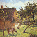 Field At Varengeville by Camille Pissarro