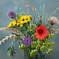 Field Flowers by Manfred Lutzius