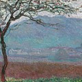 Field Giverny by Claude Monet