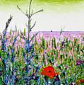Field Notes by GabeZ Art