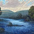 Field Of Bluebonnets by Jim Bob Swafford