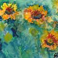 Field Of Daisies by Elizabeth Shrum