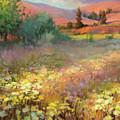Field Of Dreams by Steve Henderson