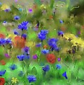 Field Of Flowers by Karen Harding