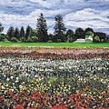 Field Of Flowers by Richard Nowak