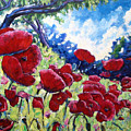 Field Of Poppies 02 by Richard T Pranke