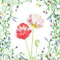 Field Poppies And Wildflowers Watercolor  by Irina Sztukowski