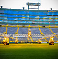Field View Of Lambeau by Stephanie Forrer-Harbridge