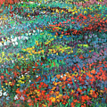 Fields Of Color by Sally Seago