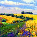Fields Of Gold by Jane Small