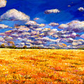 Fields Of Gold by Johnathan Harris