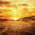 Fields Of Gold by Joshua Zaring