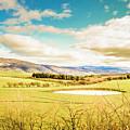 Fields Of Plenty by Jorgo Photography - Wall Art Gallery