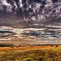 Fields Of Plenty by Naylors Photography