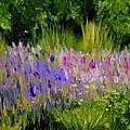 Fields Of Purple by Lisa Konkol