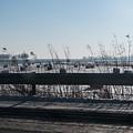 Fields Of Snow by Lauren Bucke