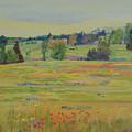 Fields Of Texas Wildflowers by Maris Salmins