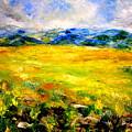 Fields by Shuly Haimsohn Weiner