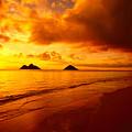 Fiery Lanikai Beach by Dana Edmunds - Printscapes