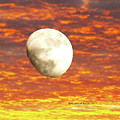 Fiery Moon by K  Joy Brown